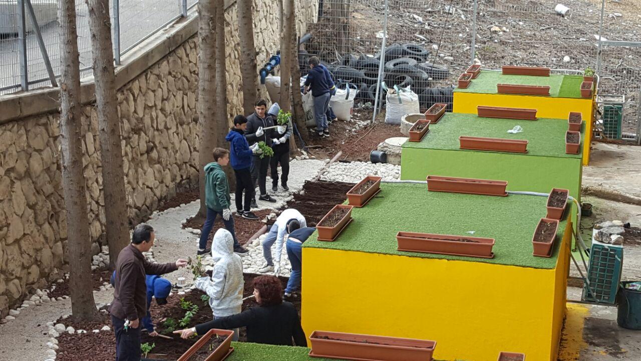 הגינה הירוקה בבית הספר אליאנס