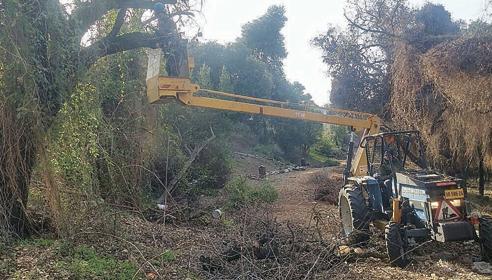 העבודות ליצירת קווי החיץ בקרית טבעון (צילום: דוברות המועצה המקומית קרית טבעון)