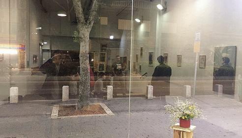 השתקפויות בחלון (צילום: שחר סיון)