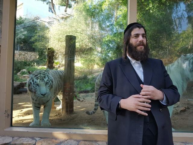ישראל פרוש בגן החיות בחיפה (צילום: אתי אררט)
