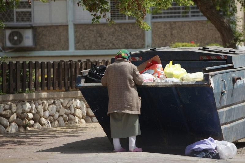 קשישה מחפשת אוכל (צילום: אליהו הרשקוביץ)