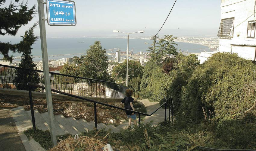 מדרגות גדרה בחיפה (צילום: אסף אורן)