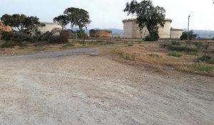 השטח העתידי של פארק האקסטרים בדגניה (צילום: שי אילן)