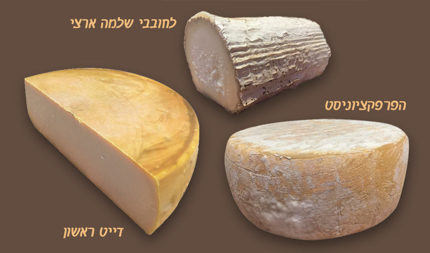 גבינות: תום ד'אקיטן , בוש דה שבר, גאודה עם נגיעות דבש.