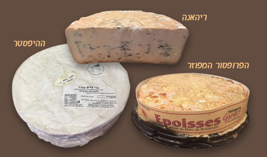 גבינות: אפואס דה בורגון, בלו דה באסק, ברי דה שבר טנדר.