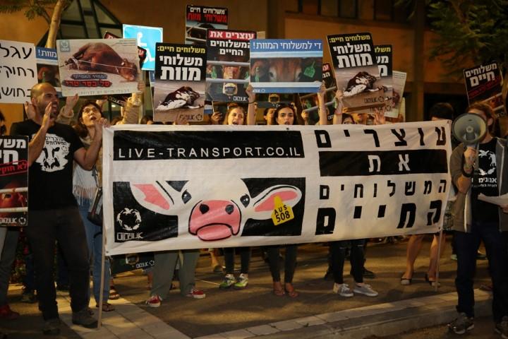 הפגנה נגד המשלוחים החיים (צילום: רויטל טופיול)