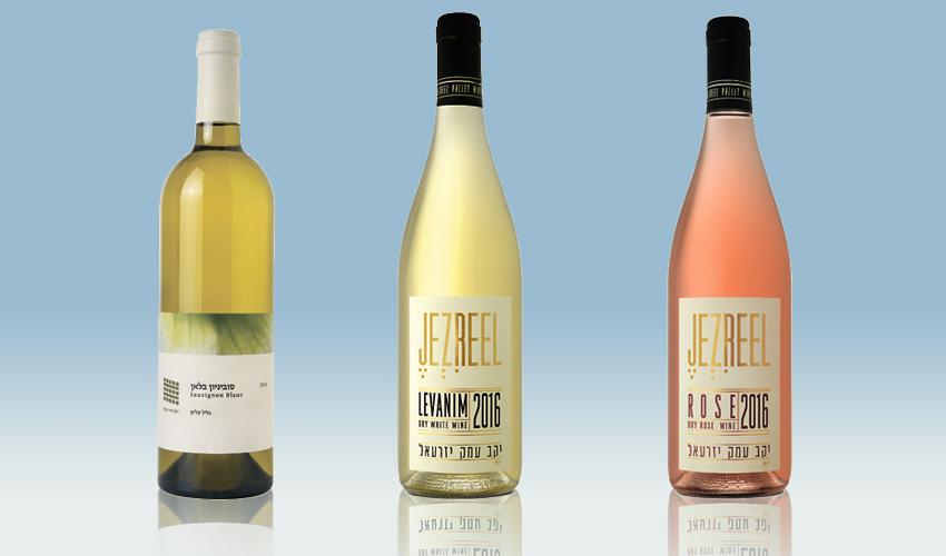 יינות: עמק יזרעאל רוזה 2016, עמק יזרעאל לבנים 2016, סוביניון בלאן הרי גליל 2016.