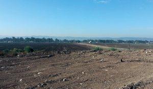 מתחם רמת דוד (צילום: אביב מלכי)