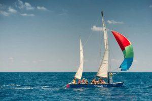 סירת סנונית של צופי ים