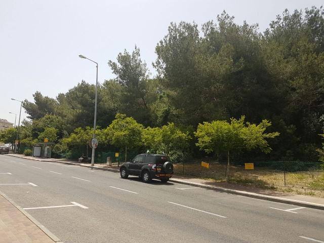 השטח שעליו יוקם פרויקט מחיר למשתכן ברמת אלמוגי (צילום: שרית נס)