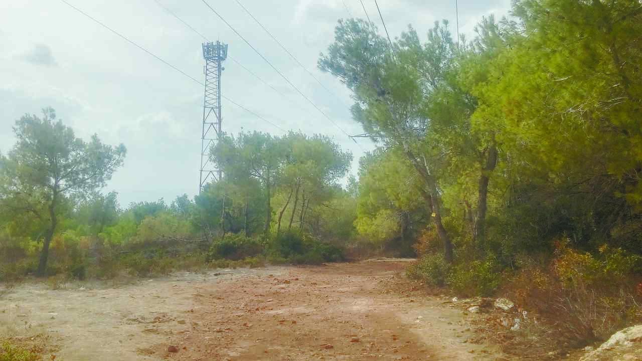 חוות האנטנות ברמת גולדה (צילום: רמי שלוש)