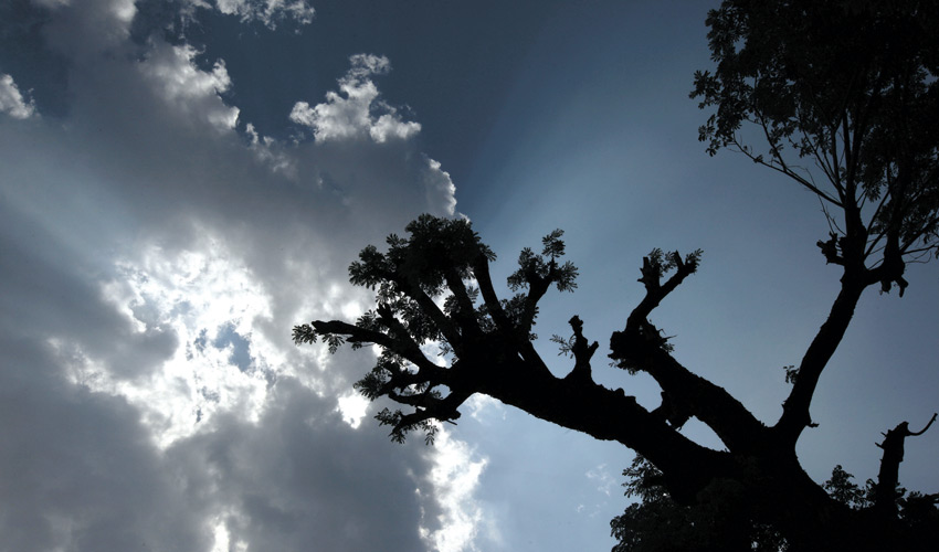 רד כבר גשם (צילום: א.ס.א.פ קריאייטיב INGIMAGE)