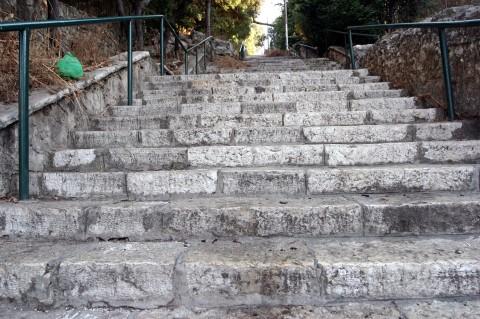 מדרגות בהדר (צילום: גוסטבו הוכמן)