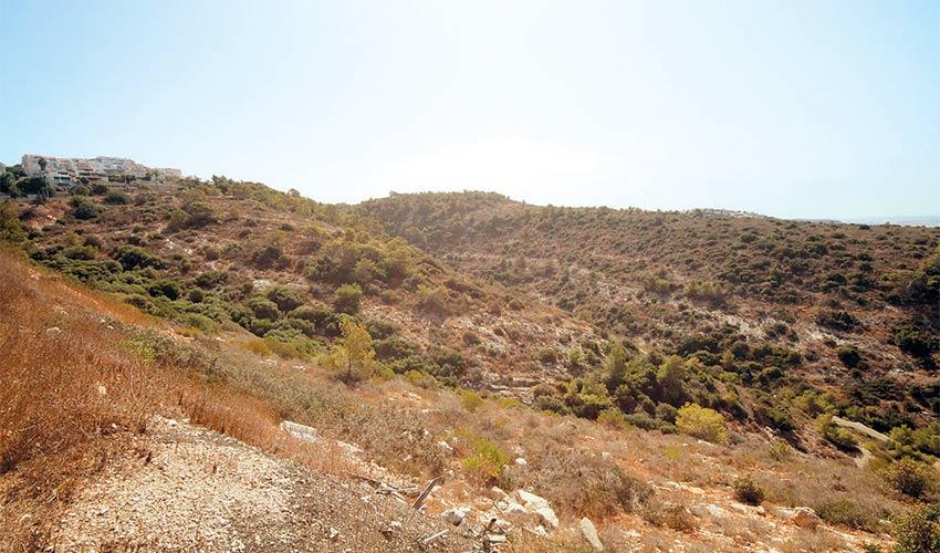 האזור שבו נמצאים השטחים המיועדים להפקעה (צילום: קובי פאר)