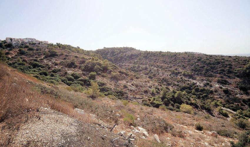 השטח שעליו מתוכננת הקמת השכונה רמת גוראל (צילום: קובי פאר)