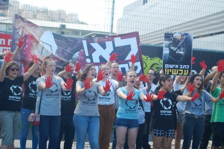 ההפגנה נגד בית המטבחיים (צילום: עמותת אנונימוס)
