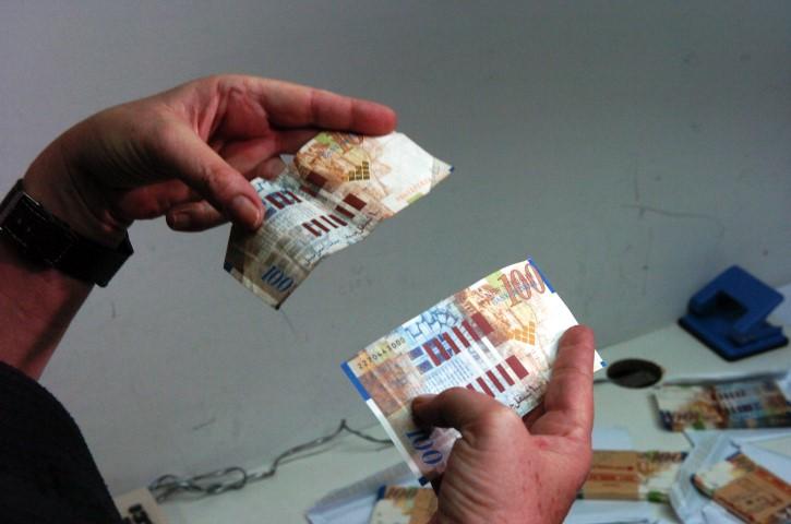 שטרות מזויפים של 100 שקל (צילום: מוטי קמחי)