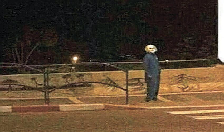 ליצן מפחיד שנצפה בדימונה (צילום: דוברות המשטרה)