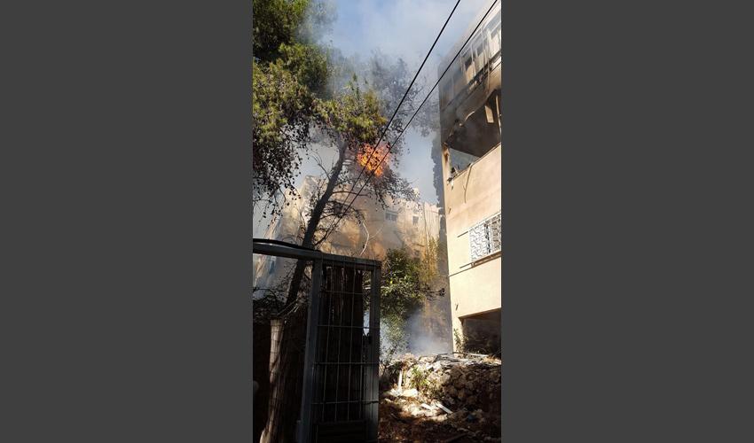 השריפה ברחוב ודג'ווד (צילום: דוברות שירותי הכבאות)