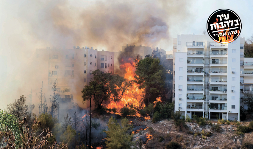 השריפה בחיפה (צילום: Jack Guez, AFP)