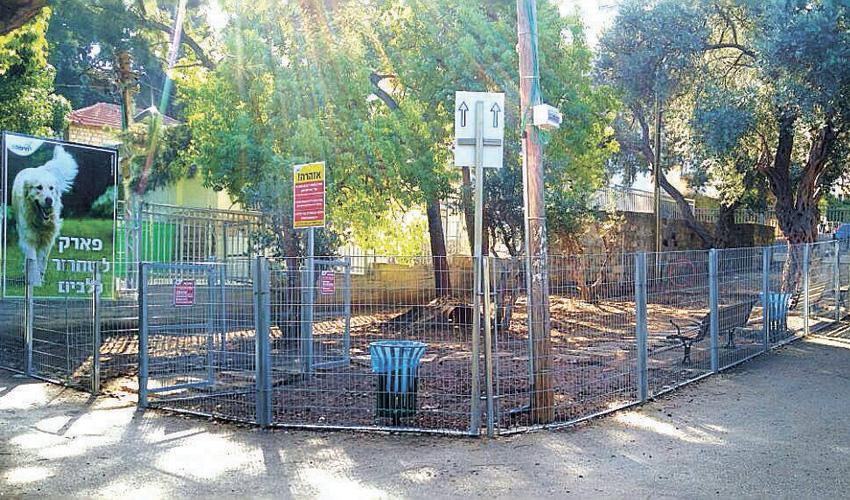 פארק כלבים בגן בנימין בחיפה (צילום: מחלקת הגנים בעיריית חיפה)