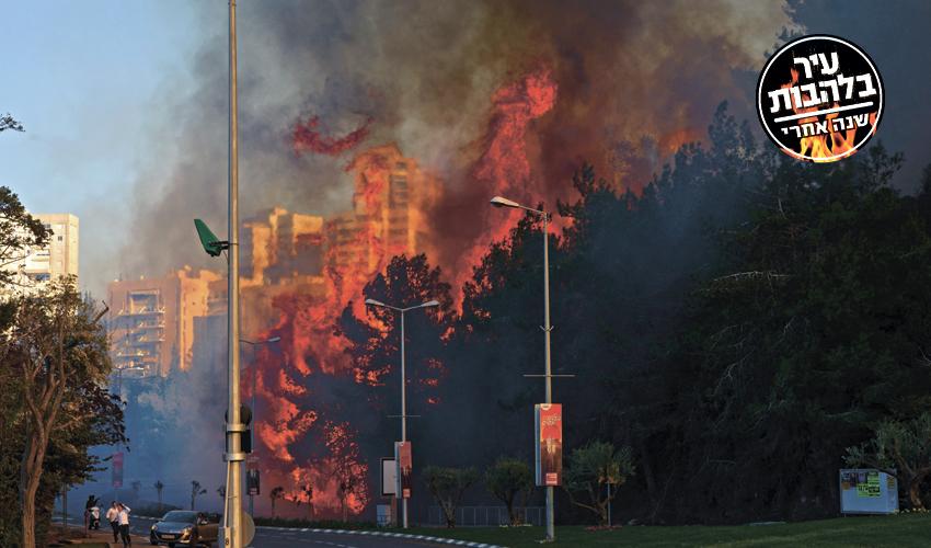 השריפה בחיפה בשנה שעברה (צילום: גיל אליהו)