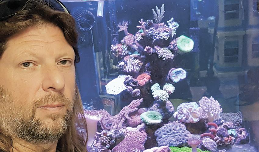 """ד""""ר אופיר מרקו. """" ראיתי שהאלמוגים גדלים בתנאים שאני מעניק להם ושאני יכול גם להתפרנס מזה"""""""