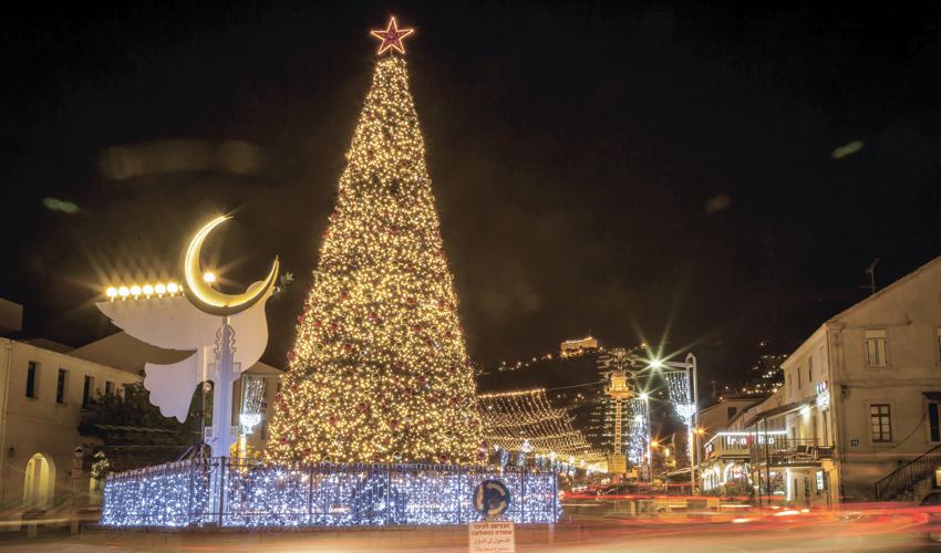 תלאות בדרך לעץ חג המולד