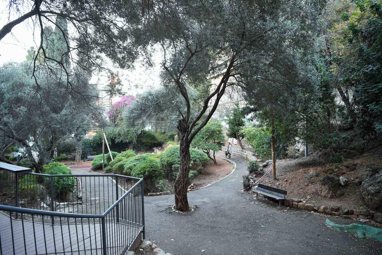 גן קסל (צילום: ראובן כהן)