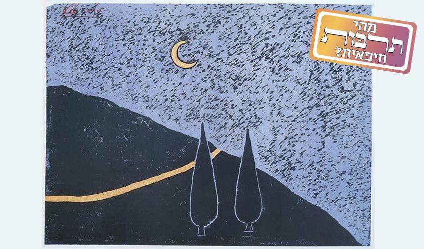 הדרך לסטלה מאריס בלילה (ציור: אליס ארבל, לפי הצילומים הליליים של אבי ברנע)