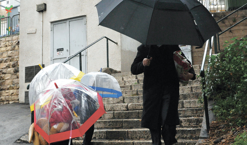 """במוצ""""ש כבר התגעגענו לסופה המדומה (צילום: רמי שלוש)"""