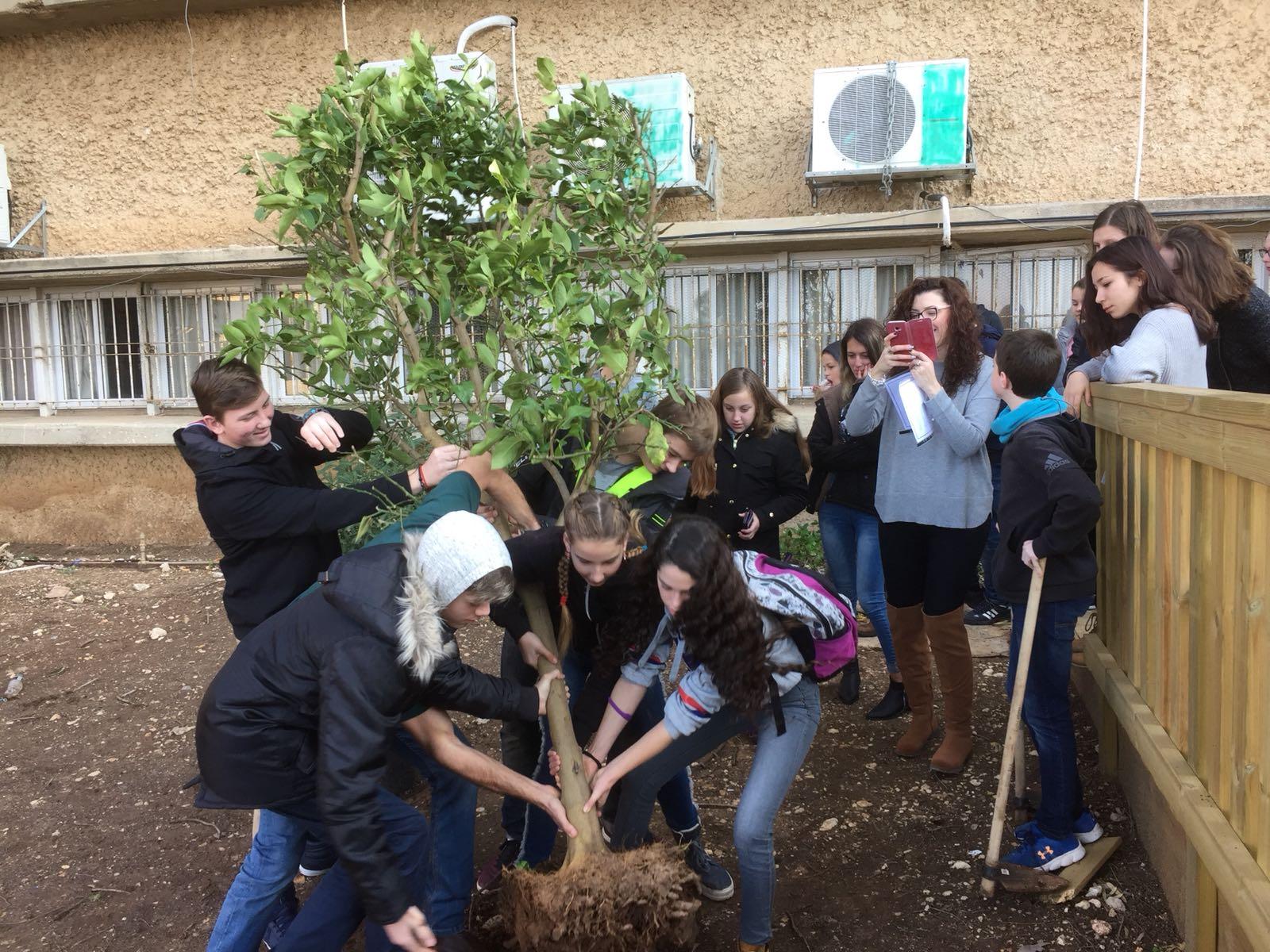 נטיעת עץ הידידות (צילום: בית הספר ליאו באק)