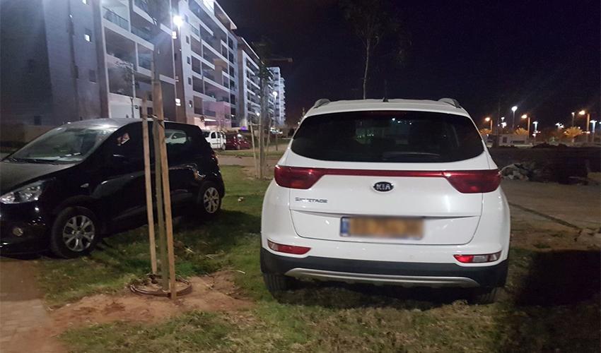 מכוניות חונות בפארק בנאות פרס
