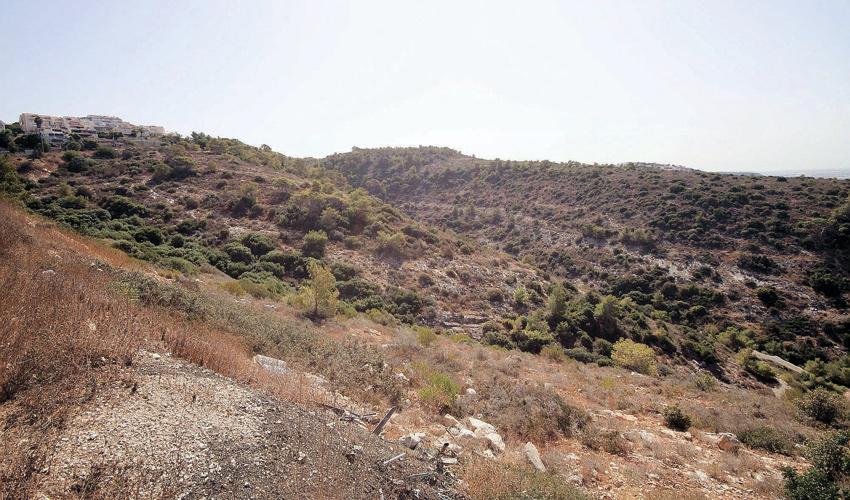 מורדות רמת גוראל (צילום: קובי פאר)