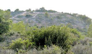 רמת גוראל (צילום: קובי פאר)
