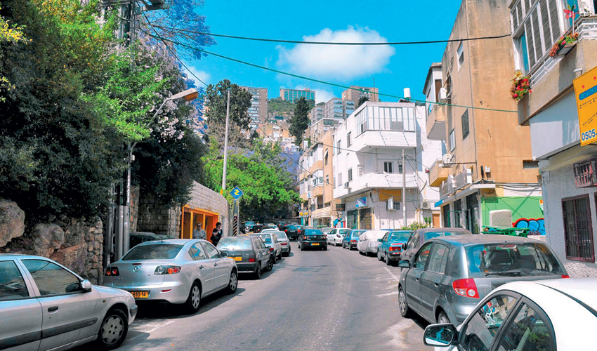 שכונת הדר (צילום: ירון צור לביא)