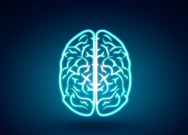 Glowing brain Free Vector By freepik