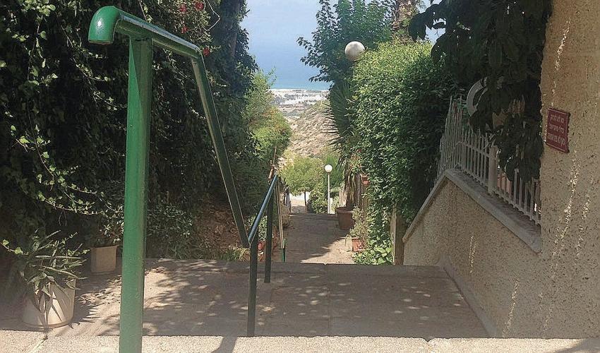 רחוב פנחס כהן