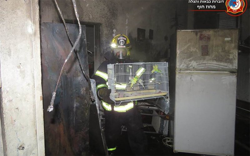 כלוב ציפורים שניצל מהשריפה בחליסה (צילום: דוברות שירותי הכיבוי)