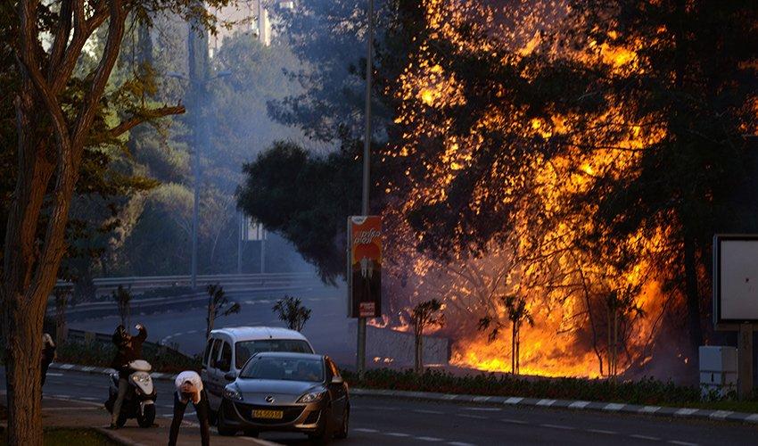 השריפה בחיפה בנובמבר 2016 (צילום: גיל אליהו)