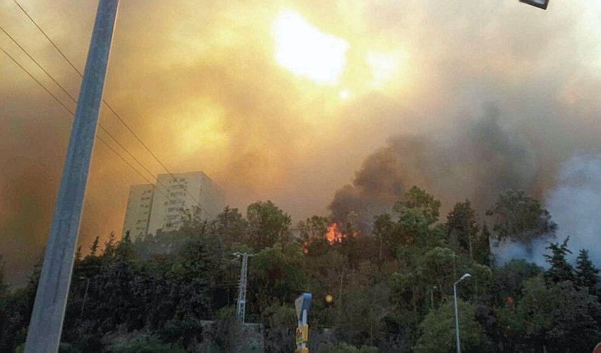 השריפה הגדולה בנובמבר 2016