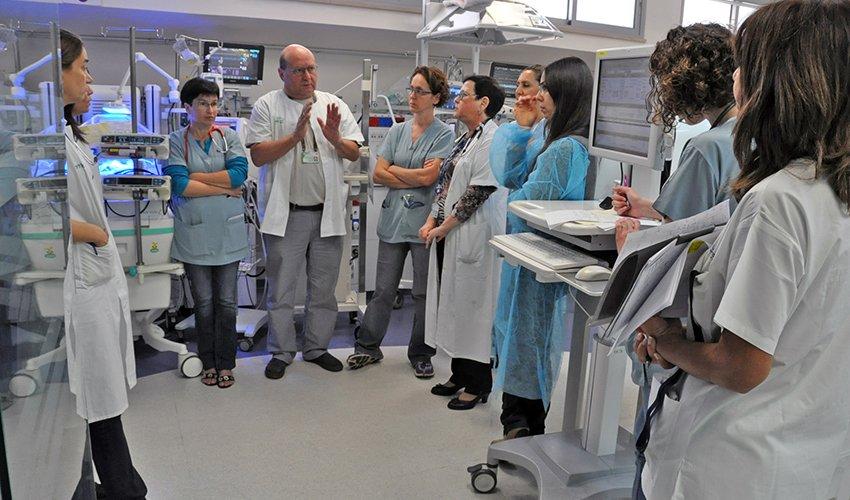 פרופ' אבי רוטשילד וצוות הפגייה במרכז הרפואי כרמל (צילום: אלי דדון)
