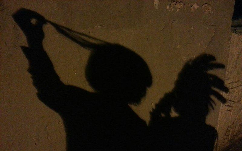 """האירוע """"מאירות בלילה"""" (צילום: דנה גולדרינג)"""