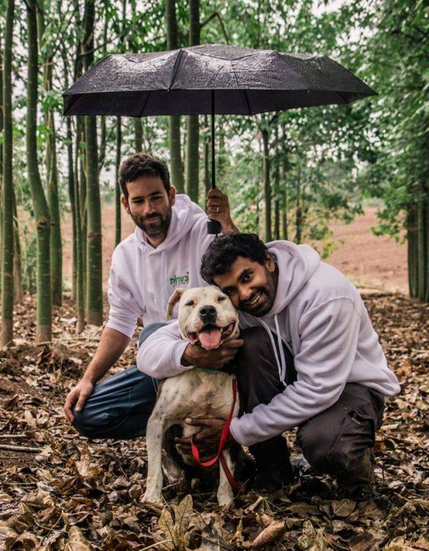"""פנסיון כלבים """"בשדות"""". צילום: יעלון שחורי"""