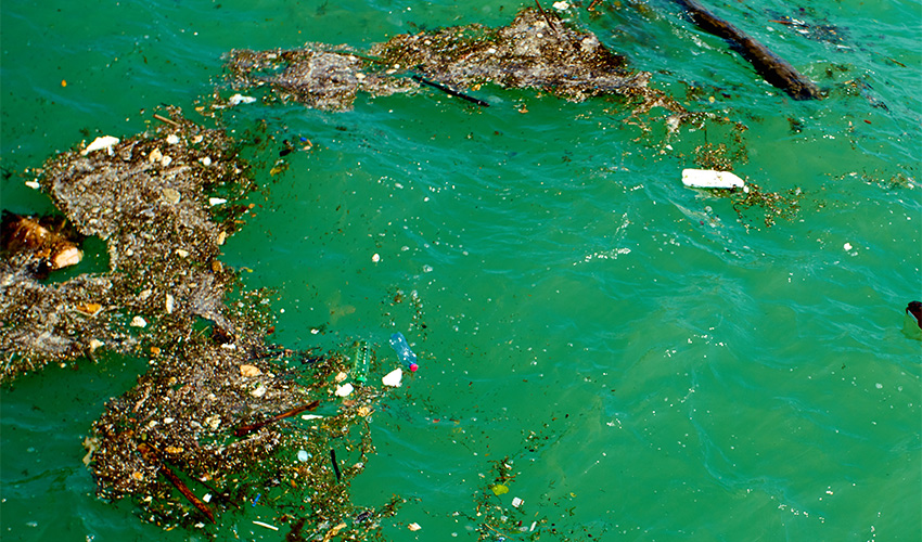 פסולת בים (צילום: א.ס.א.פ קריאייטיב/INGIMAGE)