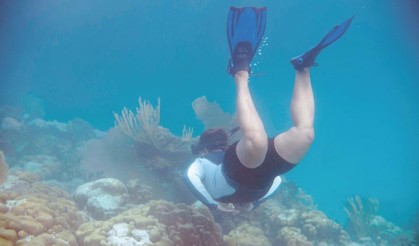 אטול אלמוגים בבליז (צילום: Pedro Pardo, AFP)