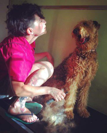 """""""לכלב עצמו חשוב להיות יפה, נקי ומטופח"""", סימה בסקין"""