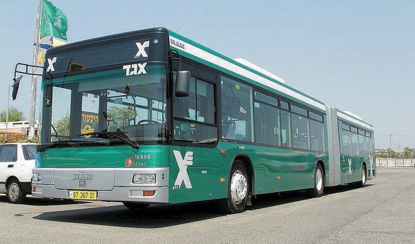 אוטובוס (צילום: חברת אגד)