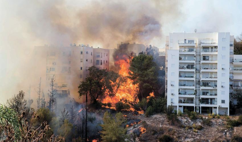 שריפה בחיפה (צילום: Jack Guez, AFP)