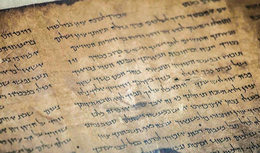 מגילות עם כתב עברי עתיק (צילום: אמיל סלמן)